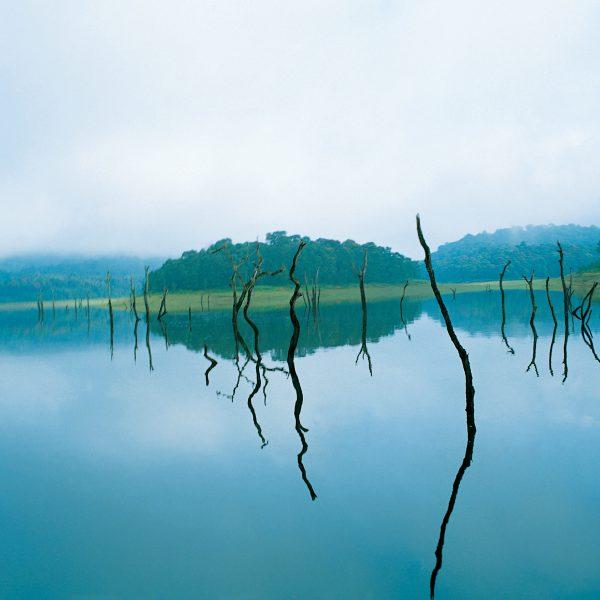 8 Kerala